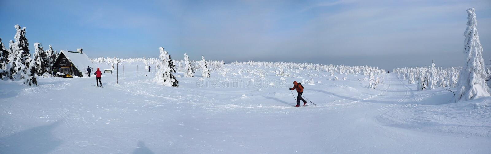 Download Cross-country skiing stock image. Image of blue, cross - 23923701