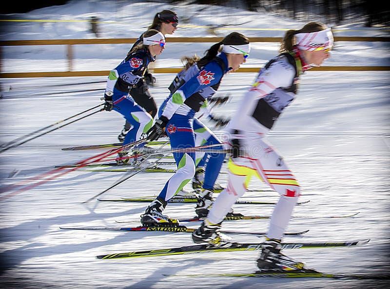 Cross-Country Skiing stock photos