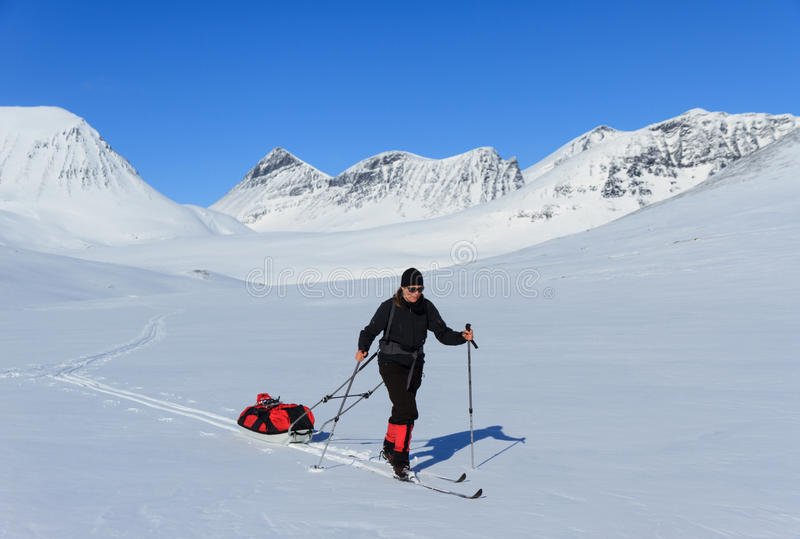 Cross country skiing in Lapland royalty free stock image
