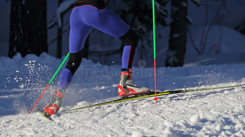 Cross country skiing royalty free stock photos