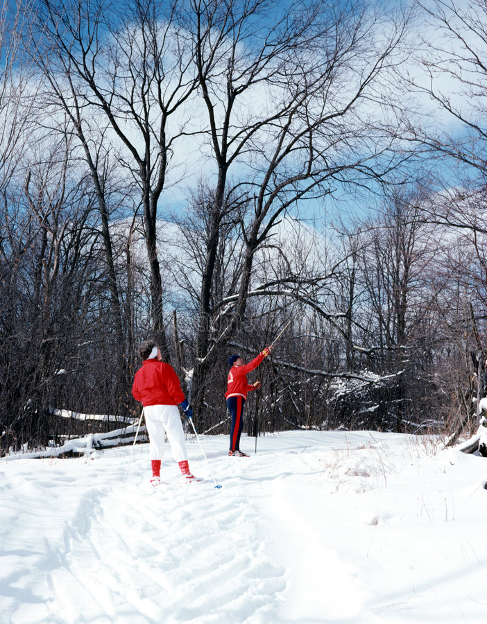 Free Cross Country Skiing, Ontario Canada Royalty Free Stock Images - 2270279