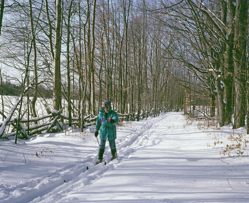 Cross Country Skiing Ontario Canada. Cross country skiing through the farming area between Almonte and Carleton Place, Lanark County, Ontario Canada stock image