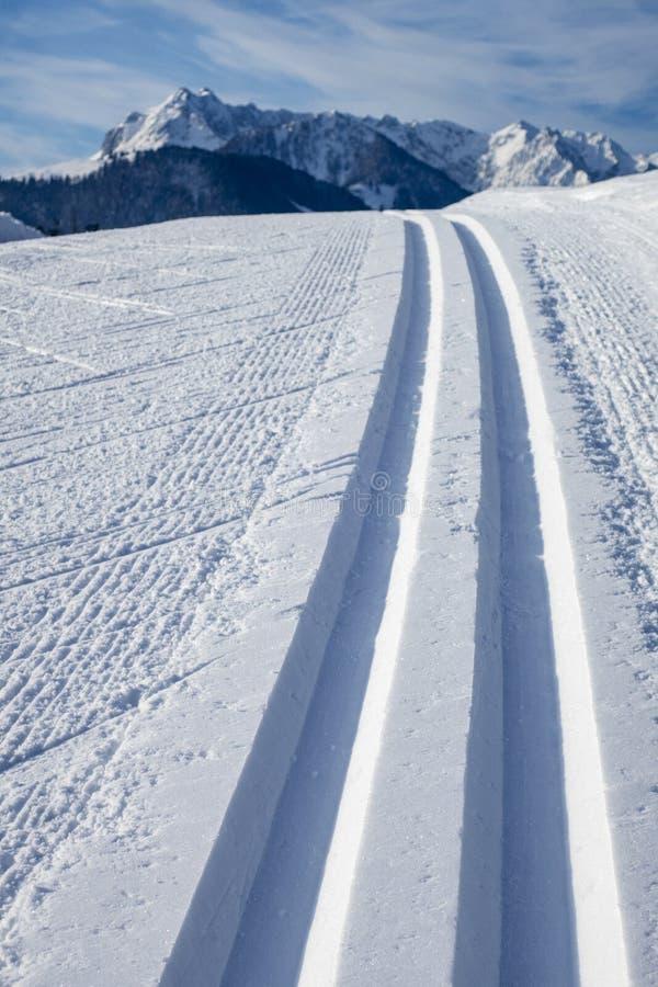 Cross country skiing tracks royalty free stock image
