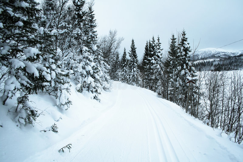 Cross country skiing trail 2 stock image