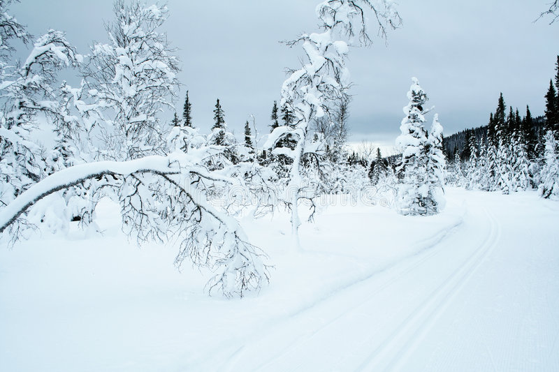 Cross country skiing trail 4 royalty free stock photos