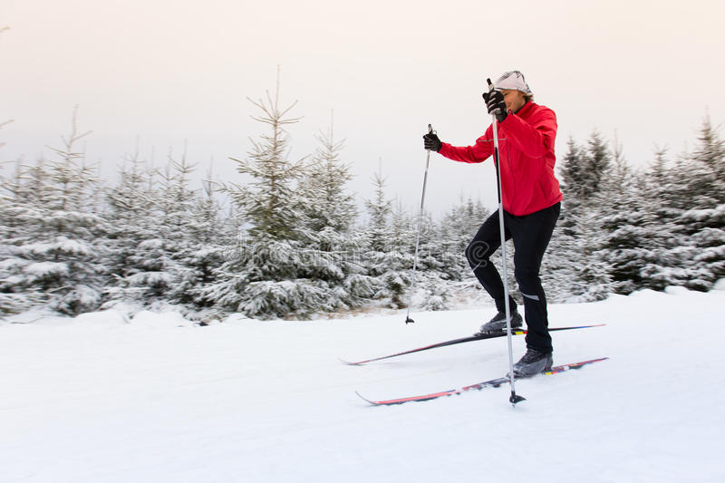 Cross-country skiing. Winter sport. stock photography
