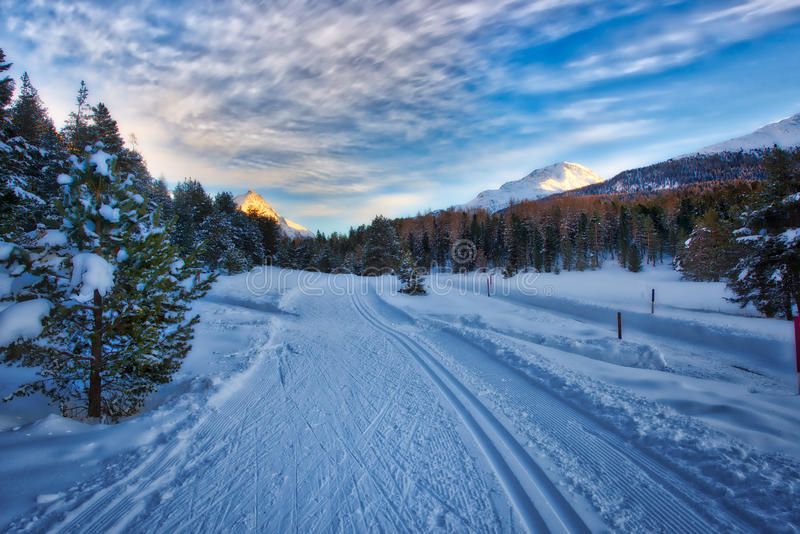 Cross-country skiing in a wonderful place. In the winter stock images