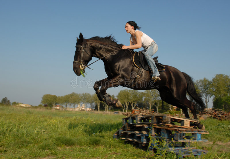 Download Cross jumping stock photo. Image of sport, horseback, galloping - 2541532