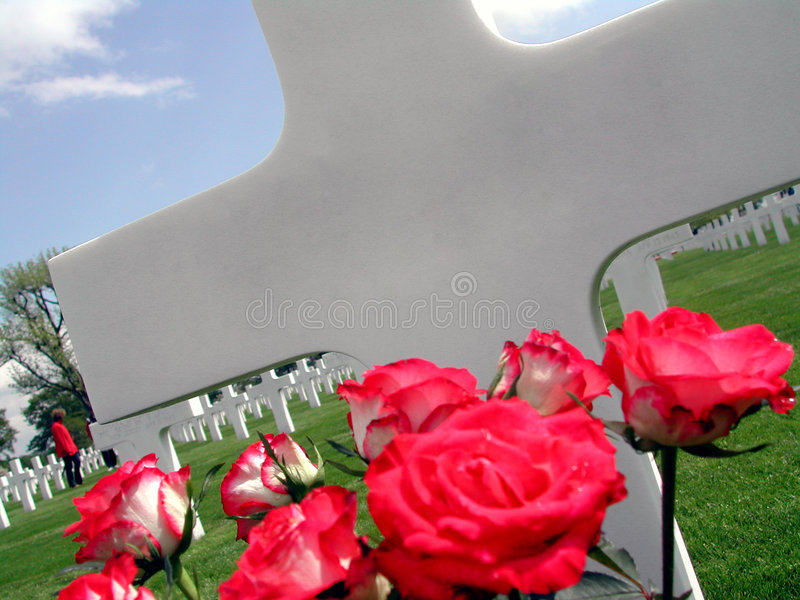 Cross with roses on Netherlands American Cemetery in Margraten stock images