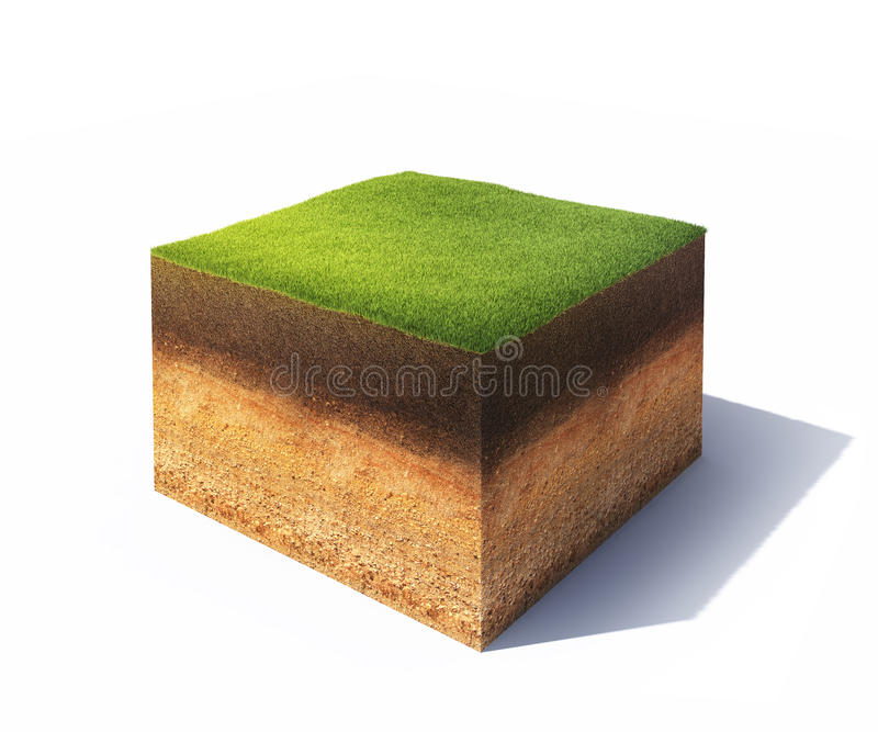 Cross section of ground. 3d model of cross section of ground with grass isolated on white vector illustration