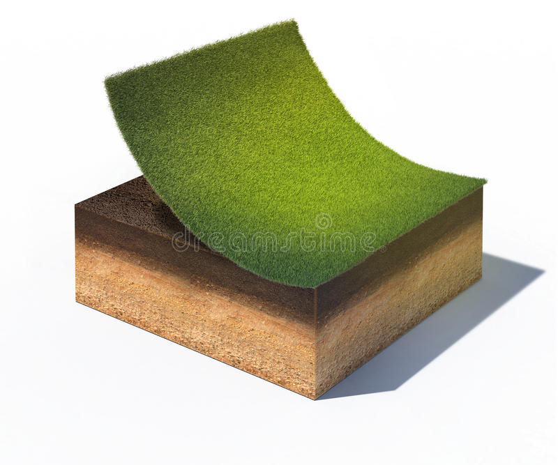 Cross section of ground with part of lawn. 3d rendered illustration of cross section of ground with part of lawn isolated on white stock illustration