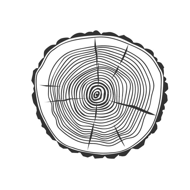 cross section of tree stump stock vector