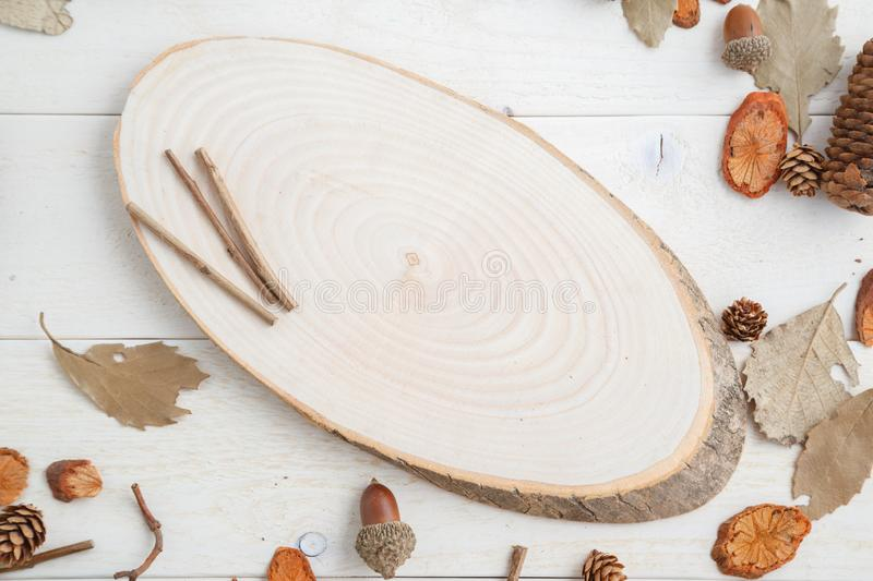 Cross-section of a tree on a wooden background in autumn style . top view with space for text.  stock photos