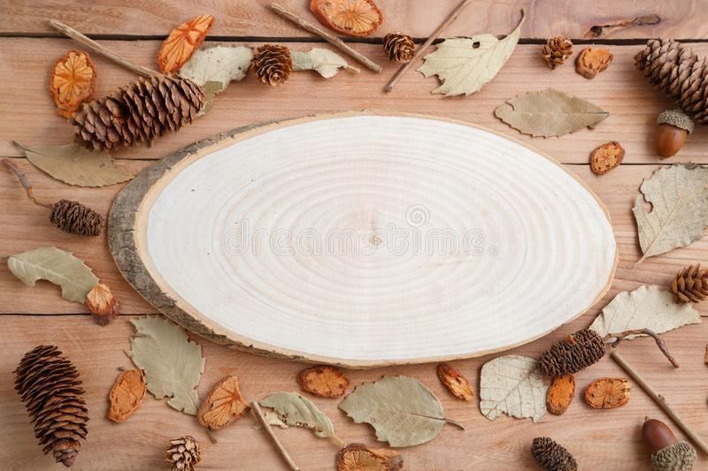 Cross-section of a tree on a wooden background in autumn style . top view with space for text.  royalty free stock photography
