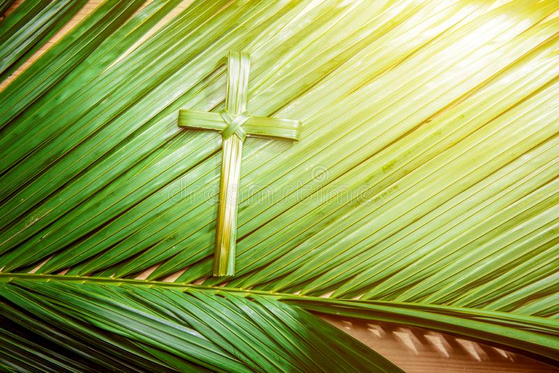 Palm Sunday concept. Cross shape of palm leaf on palm branches with ray in wooden background. Palm Sunday concept royalty free stock image