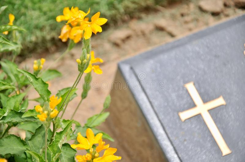 Cross on tombstone in cemetery. Engraving with christian religious symbol royalty free stock photos