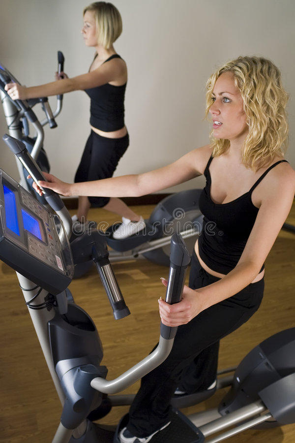 Download Cross Training stock image. Image of health, women, blond - 3840429