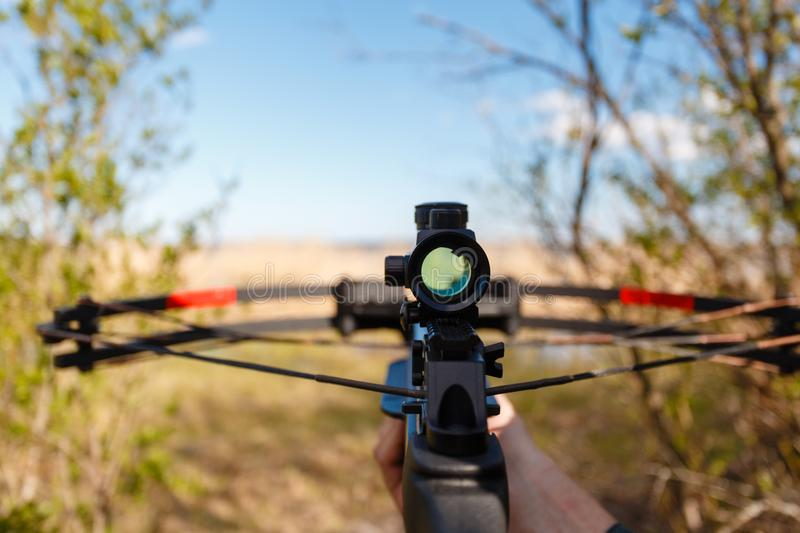 A crossbow with a sight to aim royalty free stock photo