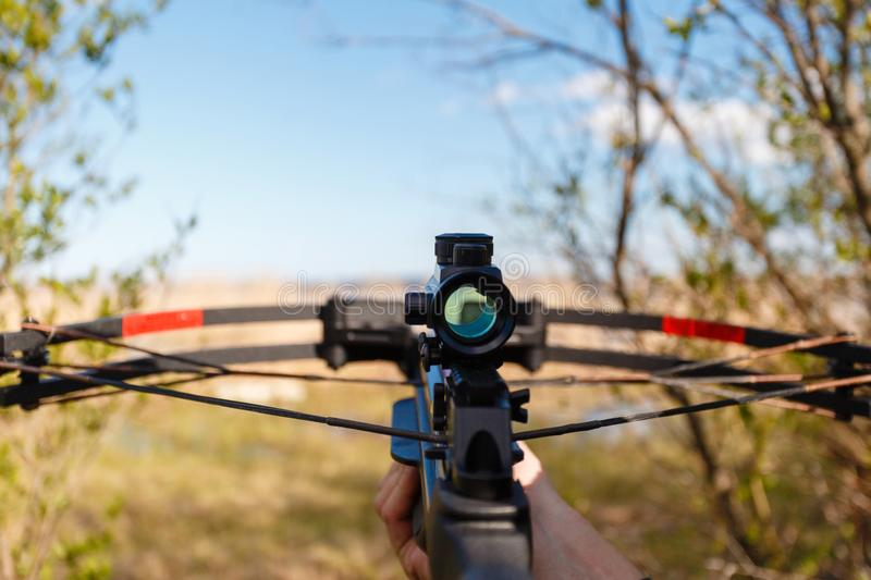 A crossbow with a sight to aim in first person royalty free stock photography