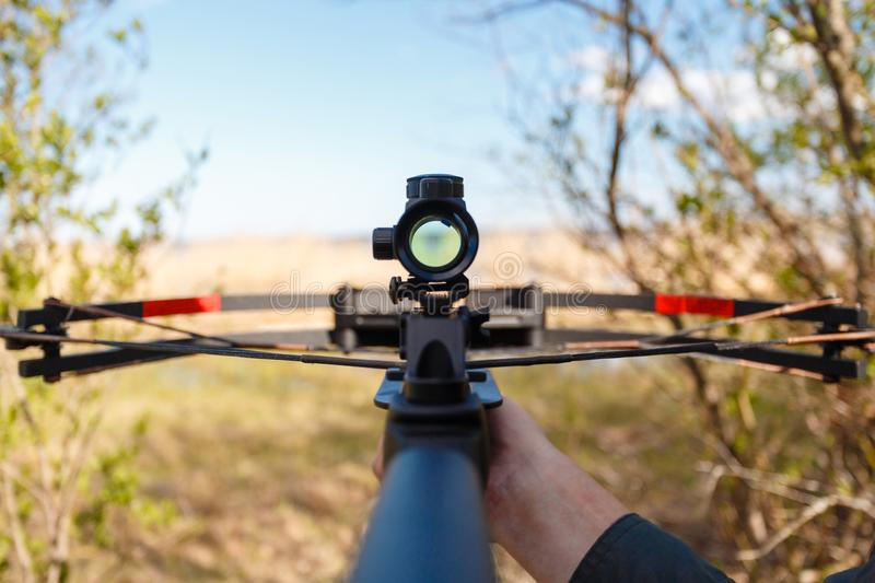 A crossbow with a sight to aim in first person royalty free stock images