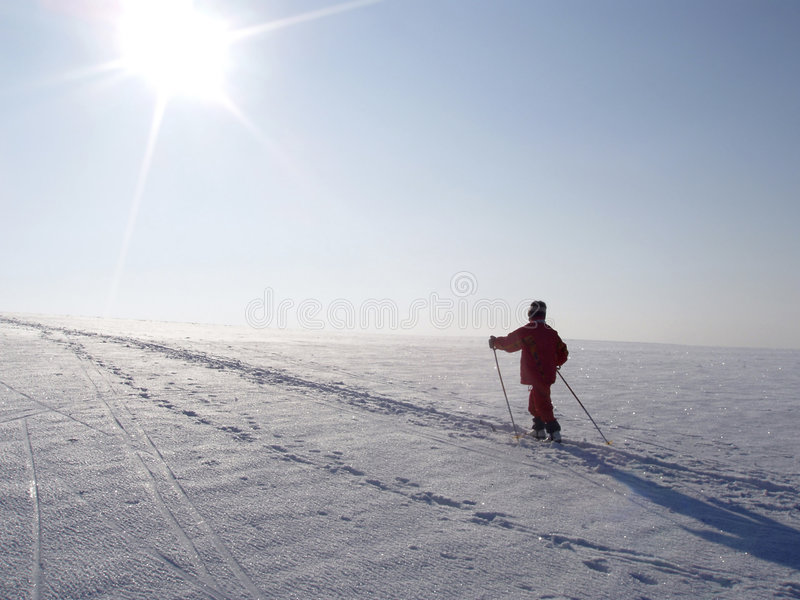 Download Crosscountry skier stock image. Image of pattern, crystal - 4313281