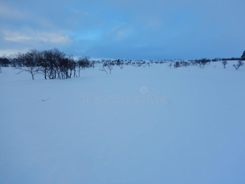 Crosscountry skiing in northern lapland beautiful nature. Adventure crosscountry skiing in northern lapland beautiful nature royalty free stock images