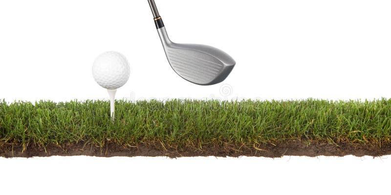 Crosscut el verde con la pelota de golf foto de archivo libre de regalías