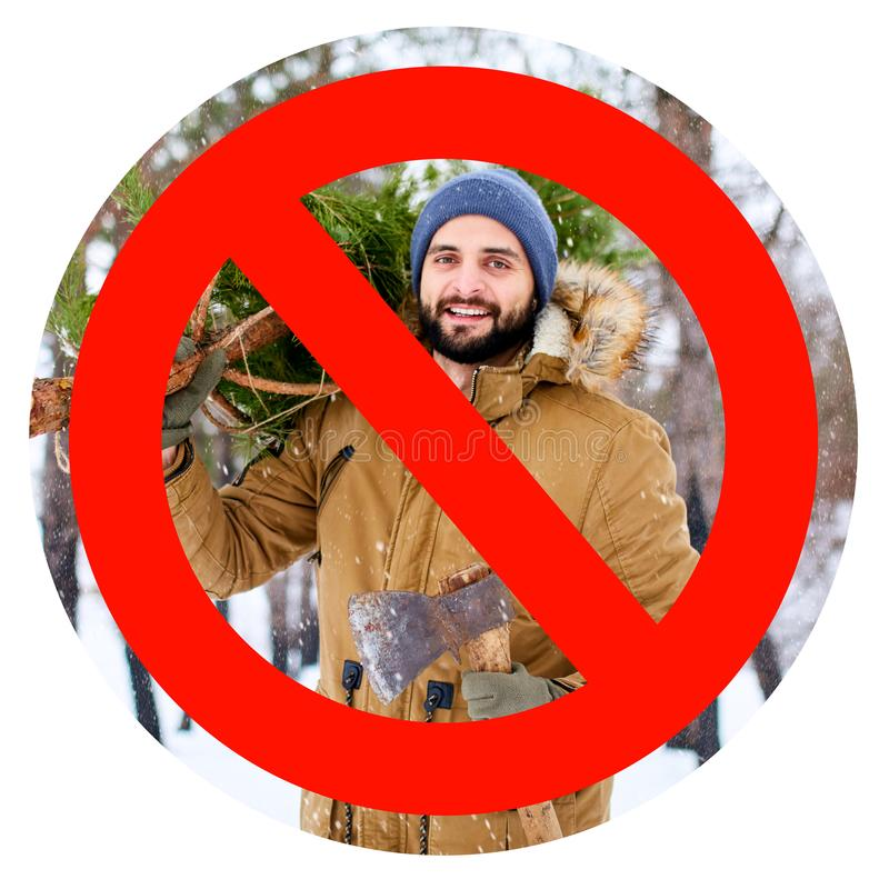Crossed out red sign on bearded lumberjack man carrying freshly cut down christmas fir tree and axe in woods royalty free stock images