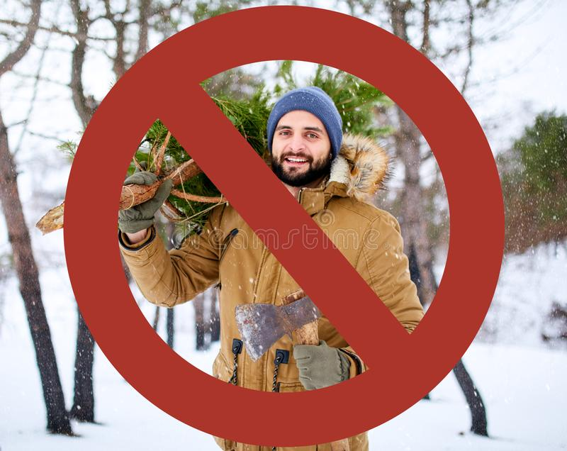 Crossed out red sign on bearded lumberjack man carrying freshly cut down christmas fir tree and axe in woods stock image
