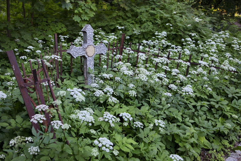 Crosses in the graveyard. royalty free stock photos
