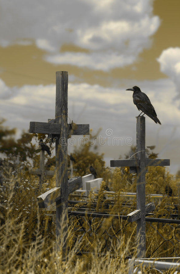 Crosses and Raven stock photography