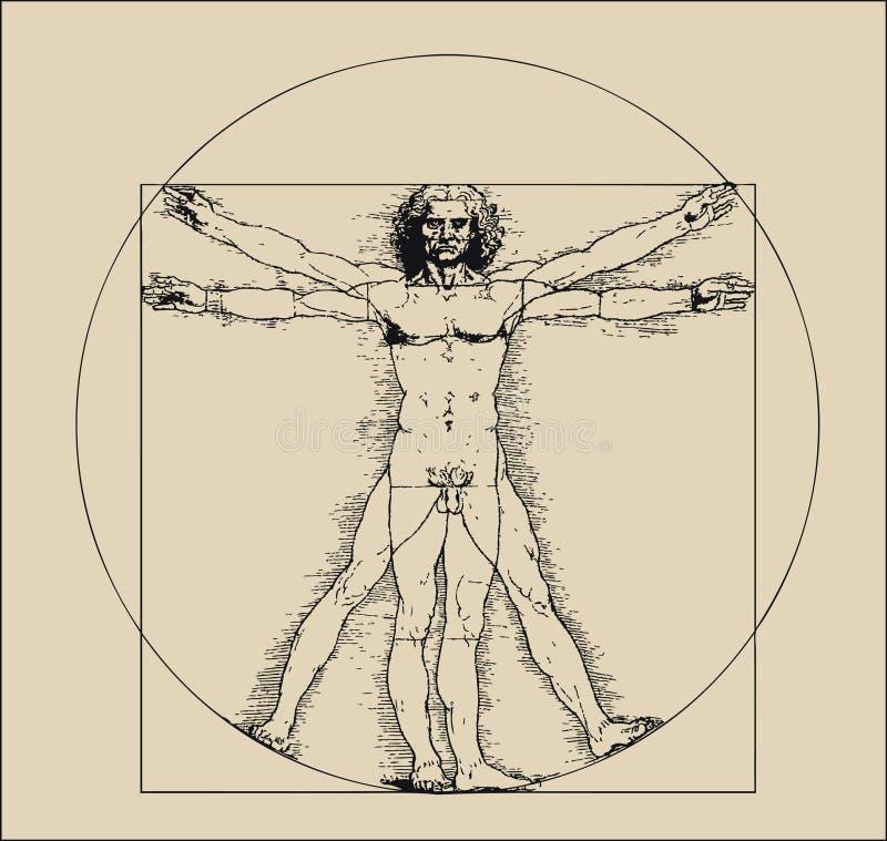 crosshatching mansepia tones vitruvian vektor illustrationer
