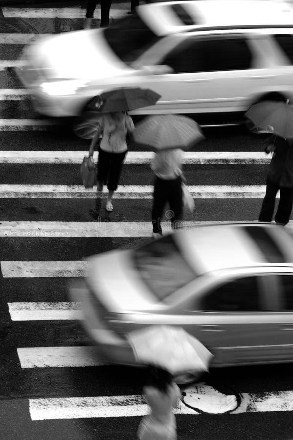 crossing royaltyfri foto