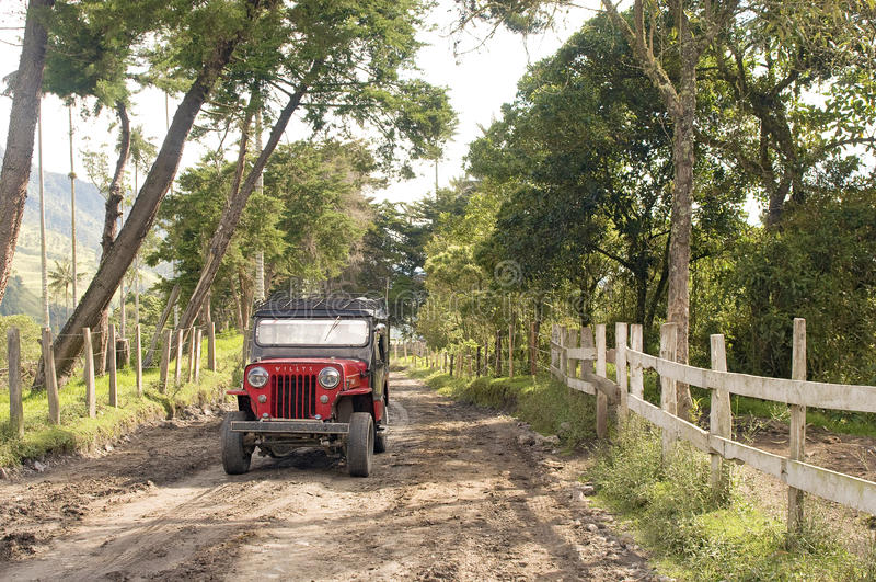 Crossing Cocora Valley, Colombia stock photography