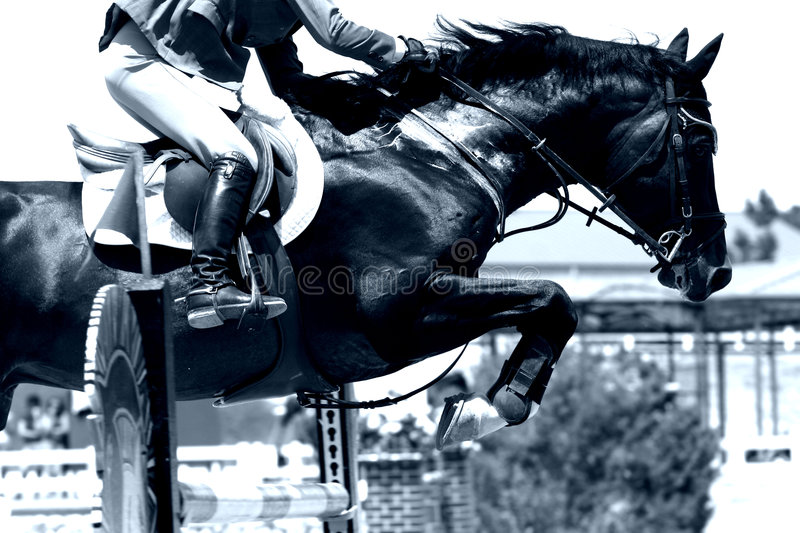 Crossing Hurdles, Equestrian 3. High Contrast, Blue Tone image of equestrian horse and rider jumping over a tall obstacle in a competition - can represent stock photos