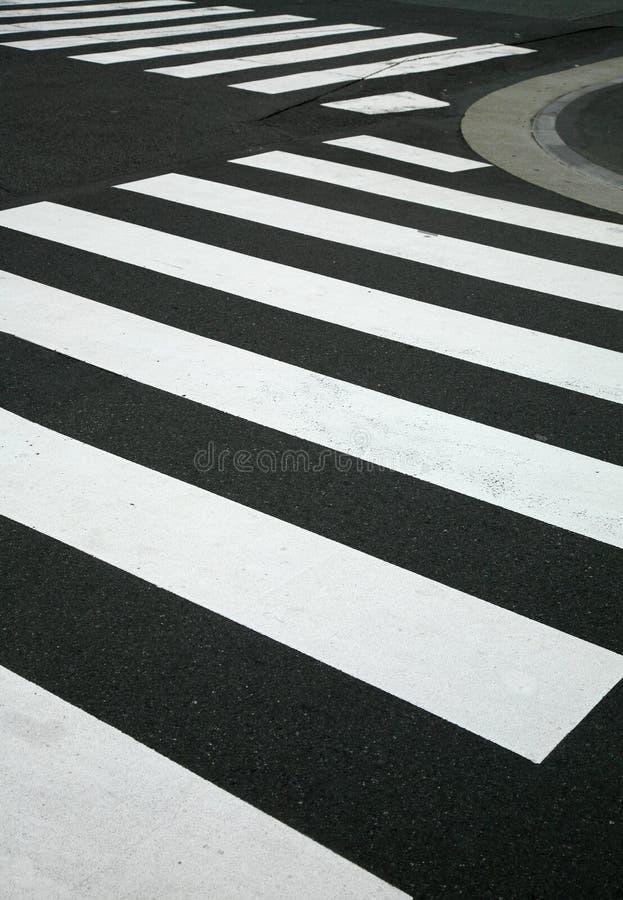 crossinggångare fotografering för bildbyråer