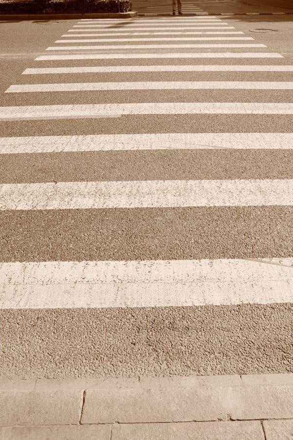 crossingsebra arkivfoton