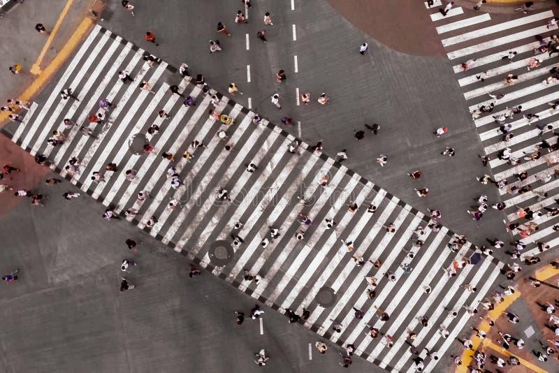 crosswalk Прогулка людей вдоль пешеходного перехода стоковое изображение