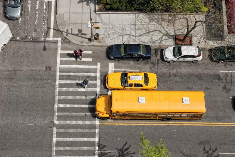 Download Crosswalk stock image. Image of crosswalk, trees, street - 12580431