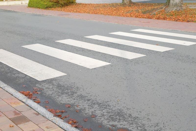 Crosswalk in de stad Zebra-verkeersvoetpad Stopconcept royalty-vrije stock foto's