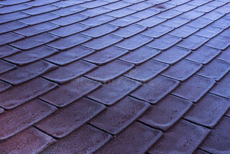 Crosta de gelo da geada da manhã no telhado vermelho das telhas imagem de stock