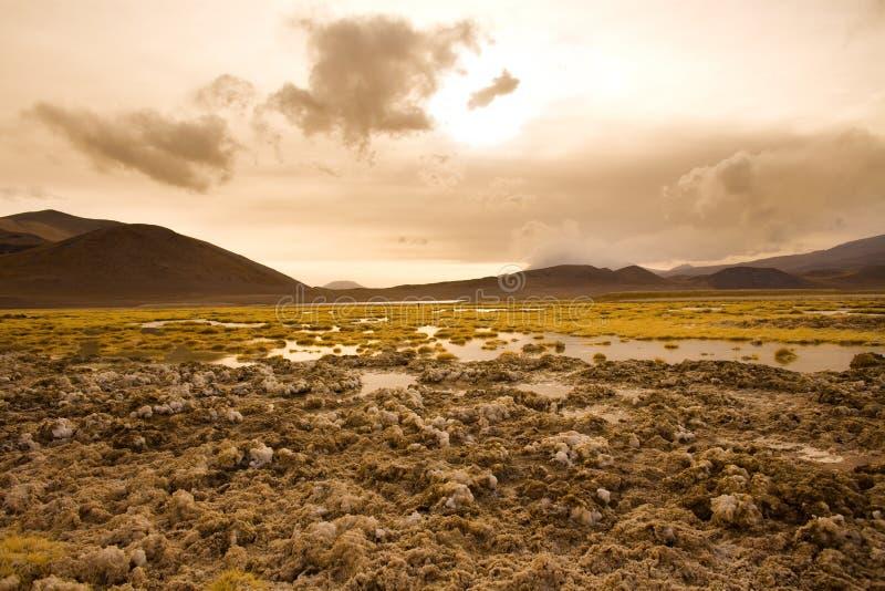 Crosta del sale alla riva della laguna e del lago di sale Tuyajto fotografie stock libere da diritti