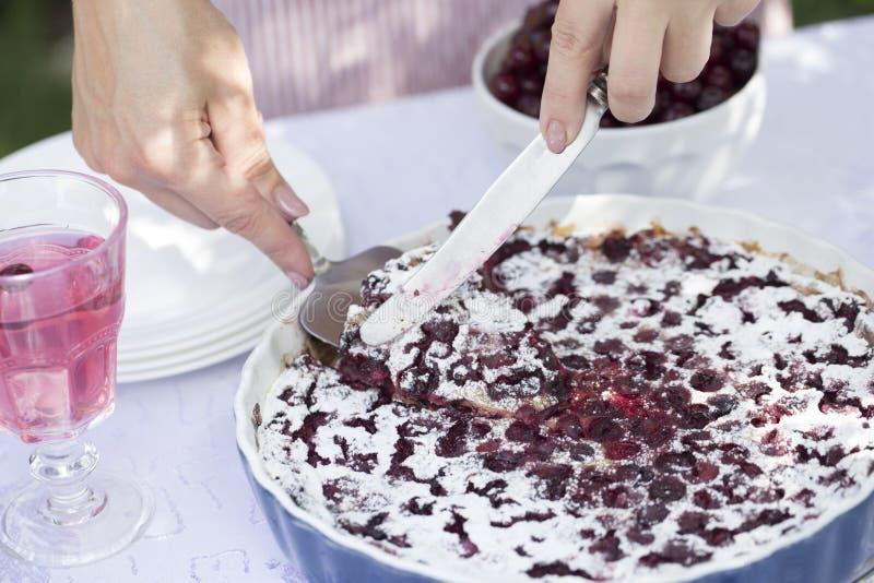 Crostata di ciliege dei Clafoutis Le mani del ` s delle donne hanno tagliato un dolce casalingo fotografie stock