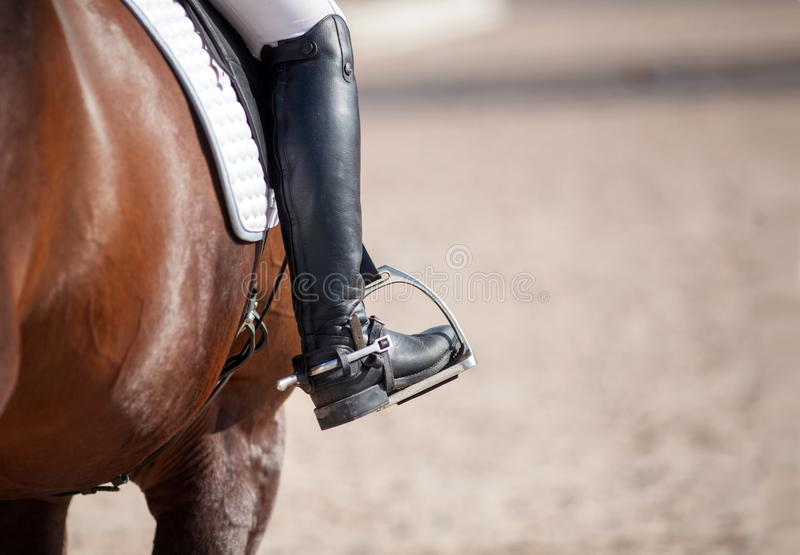 Croup of a red horse with a white saddle and a rider's foot in a boot with a spur inserted in a stirrup stock photography