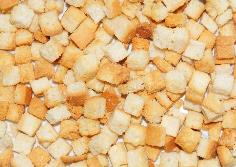 croutons стоковые изображения