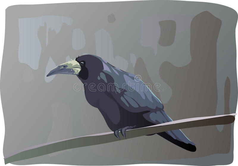 Download Crow stock vector. Illustration of beak, rook, crow, bird - 11101109