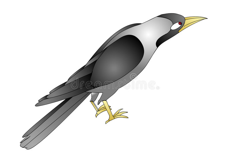 Download Crow stock illustration. Image of scary, crow, superstition - 7115627