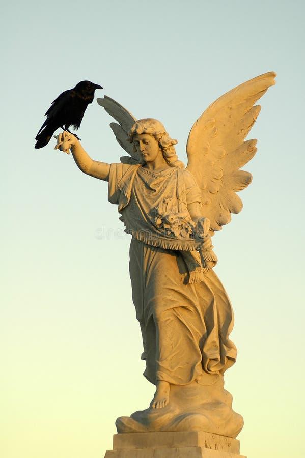 Crow and angel stock photos