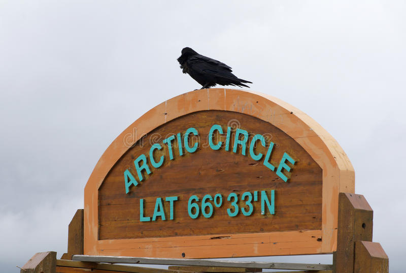Crow on Arctic Circle marker northern Canada royalty free stock photography