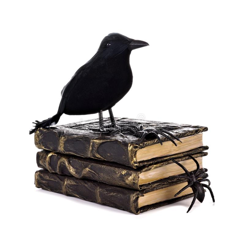 Crow with Halloween spell books isolated white stock image